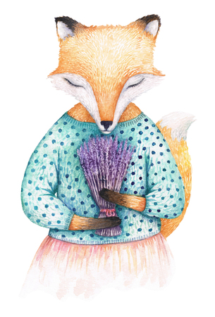A fox breathing lavender bouquets scent. Watercolor illustration isolated on perfectly white background. Can be printed as a birthday or a greeting card.