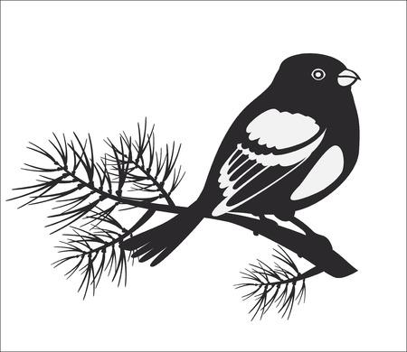 bullfinch: black silhouette of bullfinch Illustration