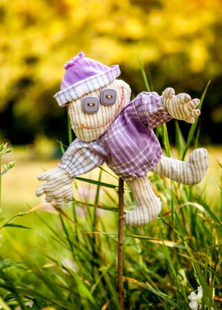 little scarecrow Zdjęcie Seryjne