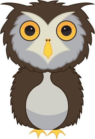 Owl bird illustration