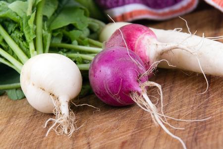dikon: Primer cultivo de rábano cosechado orgánico fresco