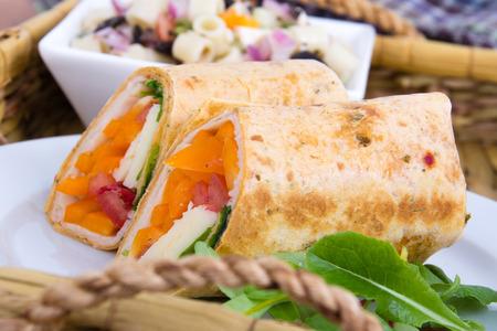 tortilla wrap: healthy tortilla wrap sandwich on plate closeup