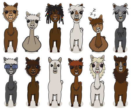 Alpaca cartoon vector set