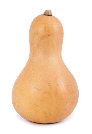 butternut squash: butternut squash isolated on white background