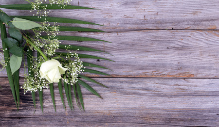 white rose flower on rustic wood table