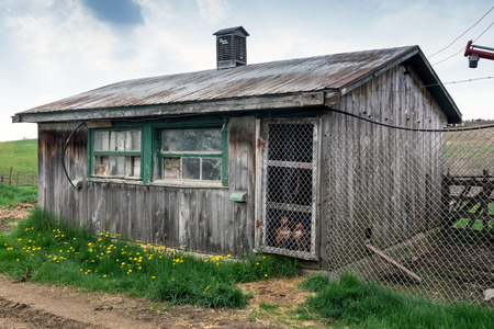 rustic old wodden chicken coop Фото со стока
