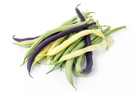 bunch of harvested bean Purple, green and yellow Wax Snap Beans