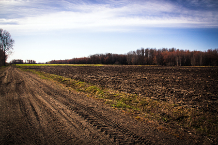 agriculture field landscape at springtime Quebec Canada morning