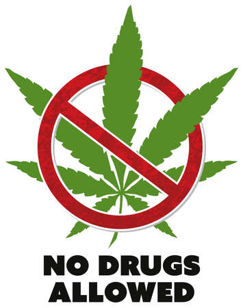 no drugs allowed notice marijuana cannabis prohibition symbol vector design