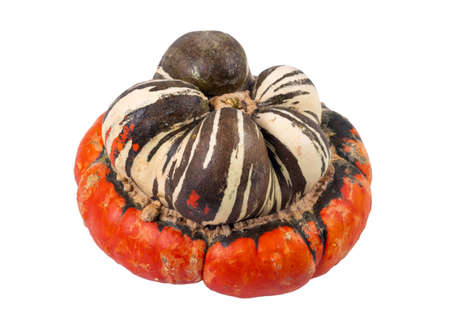 Turban squash; also known as Turk's turban or French turban is a type of squash most often used as a winter squash