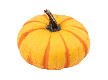 tiger striped pumpkin isolated over white background