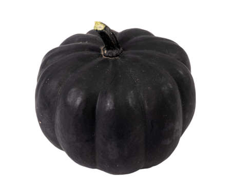 black bellota squash cultivar isolated over white background