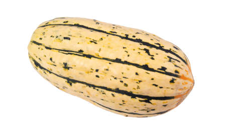 Delicata winter squash isolated over white background Imagens