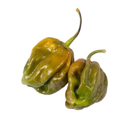 Evergreen 7-pot hot pepper pod over white background