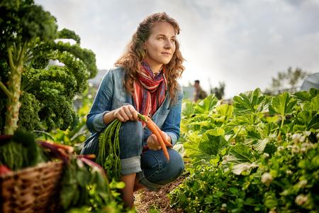 有機農作物の世話をし、新鮮な食材の豊かなかごを拾う女性庭師