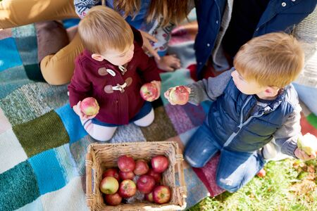 Top view of a brother and sister eating apples during a fall picnic in an apple orchard