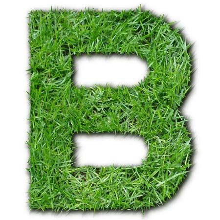 lettre: B grass