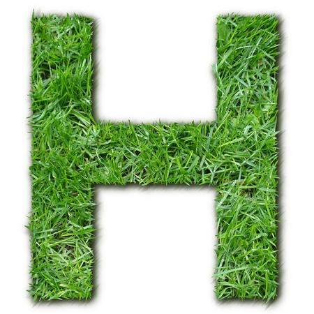 lettre: H grass