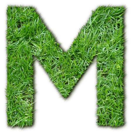 lettre: M herbe