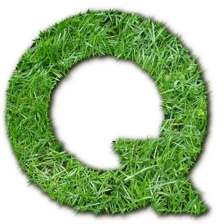 lettre: Q herbe