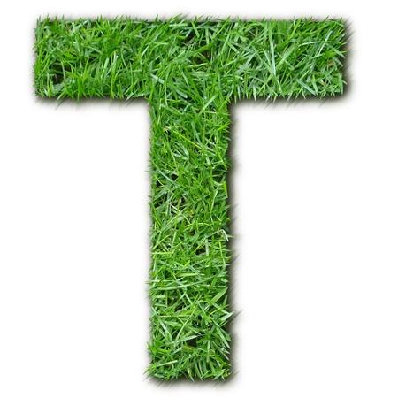 herbe: T herbe Stock Photo