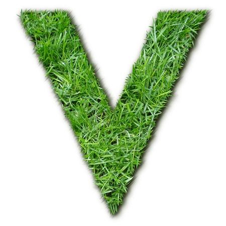 herbe: V herbe Stock Photo
