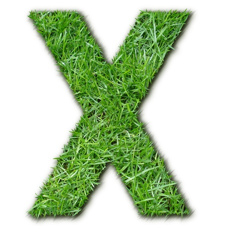 lettre: X herbe