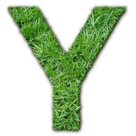 lettre: Y herbe