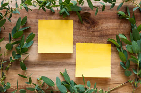 Two post-its on a wooden background surrounded by a leafy green frame. Stock Photo