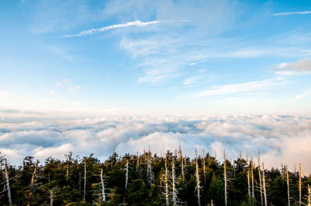 Endless Views, scenic viewpoint at the Smokey Mountains National Park, America Stock Photo