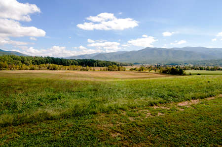 Cades Cove offers endless lush green fields in the Smokey Mountains.