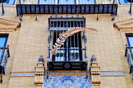 Beautiful detail on building in the center of Seville, Spain