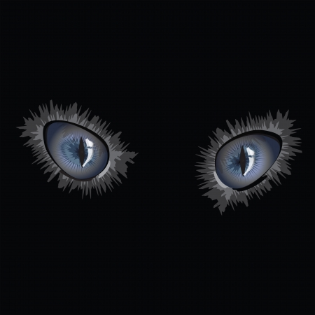 Cat eyes on black background Illustration