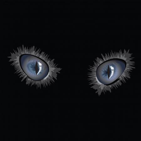 Cat eyes on black background Illustration