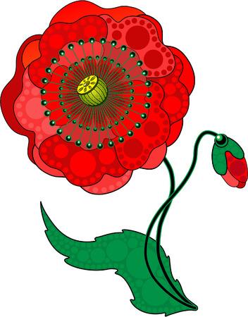 poppy field: Flor de Poppy red Vectores