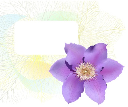 Postcard with clematis flower