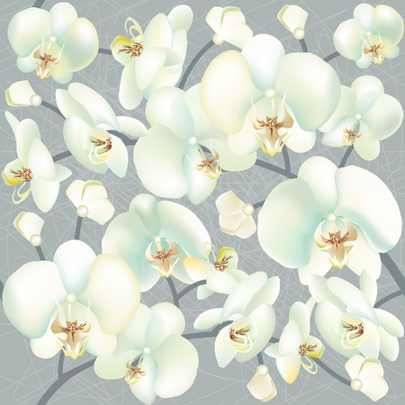 Orchid seamless texture Vector
