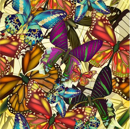 mariposa caricatura: Patrón sin fisuras con las mariposas coloridas