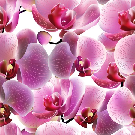 Orchid seamless pattern.    Vector