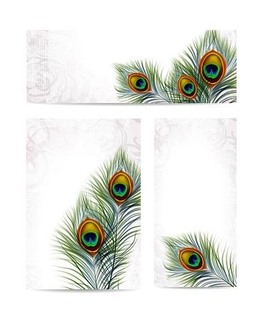 テキスト用のスペースでレトロな背景に美しいベクトル孔雀の羽。