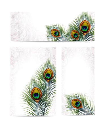 Beautiful vector peacock feathers on retro background with space for text.