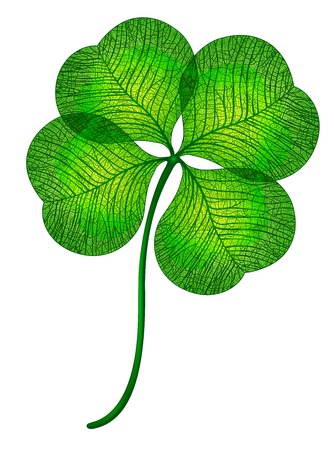 goodluck: Four leaf clover isolated.