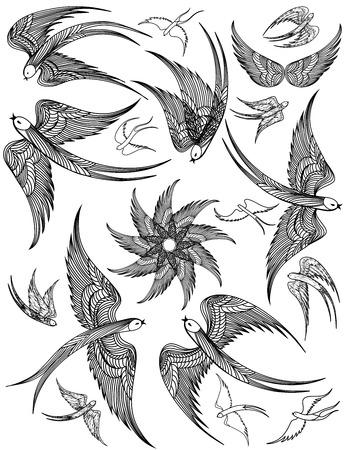 Vector set of Swallows. Vector beautiful illustration. Vettoriali