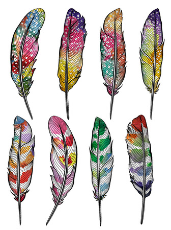 Set of isolated colorful feathers. Vector