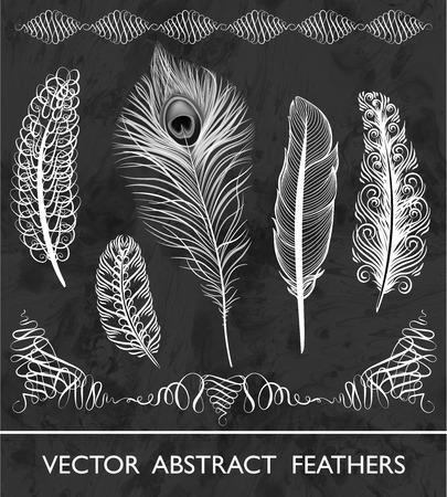 white feather: Conjunto de plumas abstractas. Ilustración del vector en blanco y negro, EPS10. Vectores