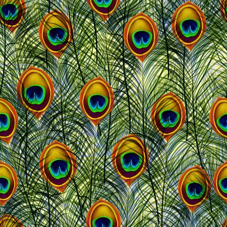 patrón de textura transparente con plumas de pavo real.