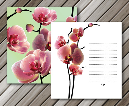 orchid: Vector orchid cards for your design. Background, EPS 10.