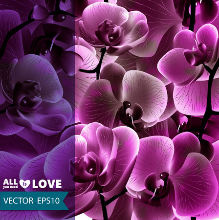 pink floral: Card or background with flowers for your design. Vector, EPS 10.