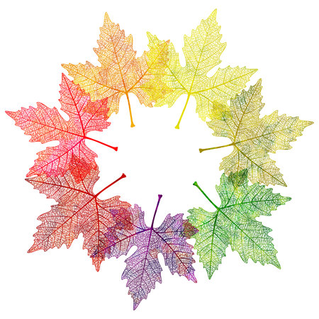 leafs: Autumn abstract floral background - circle from colorful leafs with sample text. Illustration