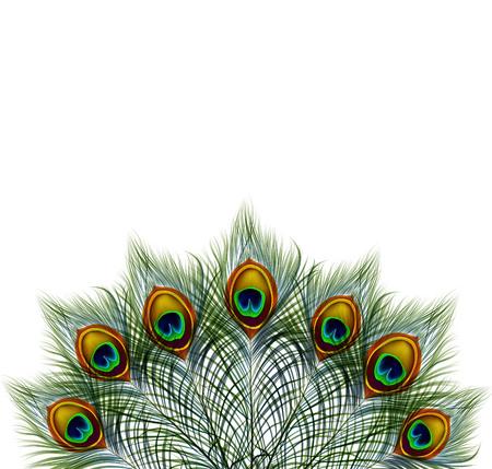 テキストのためのスペースとレトロな背景の美しいベクター孔雀の羽。
